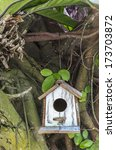 Closeup A Bird House Hanging O...