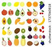 doodle fruits. natural tropical ... | Shutterstock .eps vector #1737060818
