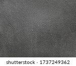 Black Snake Skin Background Is...