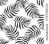 seamless pattern tropical plant.... | Shutterstock .eps vector #1737250112