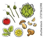 artichoke  tomatoes  garlic ... | Shutterstock .eps vector #1737361598