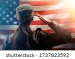 Veterans Day  Memorial Day ...