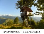Tree House In The Mountains  A...