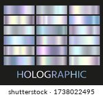 holographic  silver  bronze and ... | Shutterstock .eps vector #1738022495