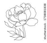 vector illustration of black... | Shutterstock .eps vector #1738081838