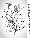lily illustration   isolated... | Shutterstock .eps vector #173842322
