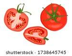 tomato slice set isolated on... | Shutterstock .eps vector #1738645745