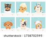 The Collection Of Cute Dog With ...