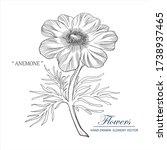 sketch floral botany collection.... | Shutterstock .eps vector #1738937465