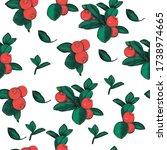 cowberry seamless pattern ... | Shutterstock .eps vector #1738974665