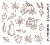 autumn leaves and pumpkins... | Shutterstock .eps vector #1739202995