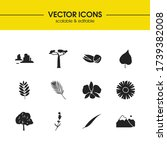 plant icons set with mountain ...