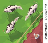 cattle semi flat vector... | Shutterstock .eps vector #1739524745
