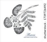 sketch floral botany collection.... | Shutterstock .eps vector #1739726492