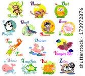 cute animal alphabet for abc... | Shutterstock .eps vector #173972876