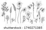 hand drawn wildflowers isolated ... | Shutterstock .eps vector #1740271385