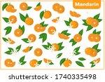 set of vector cartoon... | Shutterstock .eps vector #1740335498