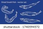 Dried Salted Smelt Fish - vector illustration, beer snack, ink drawing for package design