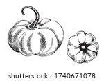 two pumpkin vector freehand...   Shutterstock .eps vector #1740671078