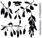 berries  black silhouette ...   Shutterstock .eps vector #1740680825