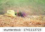 Straw Hat And Meadow Flowers On ...