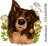 the border collie brittany... | Shutterstock .eps vector #1741654598