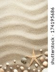 sandy background with shells... | Shutterstock . vector #174195686