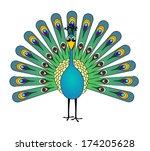 Peacock Cartoon   Vector ...