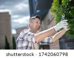 Gardening time. Dark-haired male in protective gloves trimming tree branches in the yard, smiling - stock photo