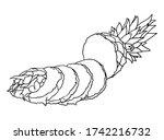 vector hand drawn pineapple.... | Shutterstock .eps vector #1742216732