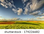 lines and waves in the detail... | Shutterstock . vector #174226682