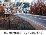 Devastated flora and fauna on theroad to Lake Mountain ski resort after 2009 Black Saturday bushfires near Marysville, Victoria, Australia