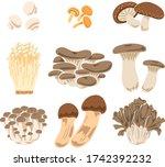 illustration of nine kinds of...   Shutterstock .eps vector #1742392232