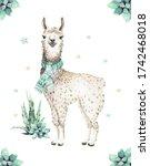 Cute Watercolor Llama  Alpaca...