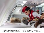 Small photo of Dalaman, Turkey - June 2016: Air hostess talking with passengers in the cabin. Atlasglobal Airlines, Atlasjet. Stewardess in an airplane. Selective focus, place for text.