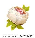beautiful summer flower of... | Shutterstock .eps vector #1742529455