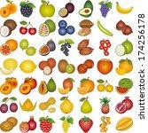 fruits of the world | Shutterstock .eps vector #174256178