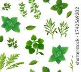 spice seamless pattern. food... | Shutterstock . vector #1742569202