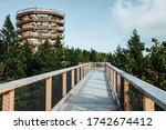 Wooden Bridge And Observation...