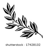 vector silhouette of the branch ... | Shutterstock .eps vector #17428132