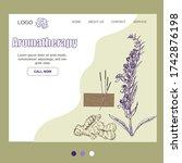aromatheraphy  natural organic...   Shutterstock .eps vector #1742876198