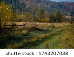 An Overgrown Road Fenced By An...