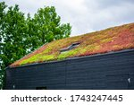 Small photo of Building with a green roof completely covered with vegetation. Extensive green sustainable sedum cassette roof with succulent plants. Roof greening with succulents. Skylight in the middle of the roof