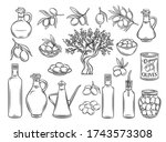 hand drawn olives  tree... | Shutterstock .eps vector #1743573308