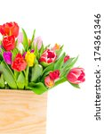 tulips in the box on white... | Shutterstock . vector #174361346