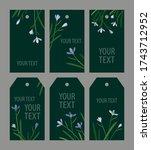 set snowdrops on a green...   Shutterstock .eps vector #1743712952