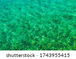Tropical Turquoise Crystal Clean Bay Water. Tropic Theme Background. Boating and Fishing Backdrop. - stock photo
