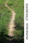 Dirt Little Path Between Grassy ...