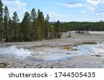 Late Spring in Yellowstone National Park: Norris Sinks Near Branch Spring in the Back Basin Area of Norris Geyser Basin