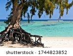 La Saline Les Bains Beach  Ile...